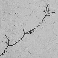 Stress Corrosion Cracking S3i Group