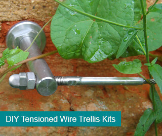 Wire Trellis Systems Plant Training Amp Support Wires