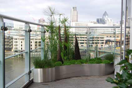 Large bespoke stainless steel planter