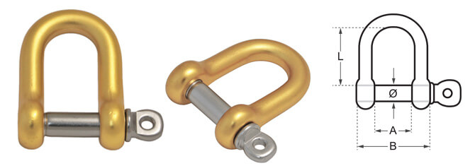 D Shackle Yellow/Gold