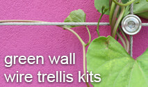 Stainless steel wire trellis system