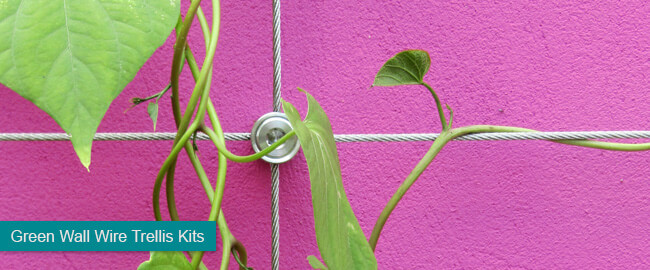 Green Wall Wire Trellis Kits
