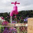 Jill Foxley, RHS Hampton Court 2010