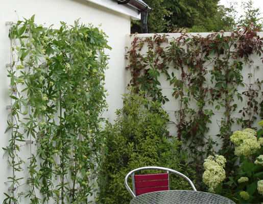 Stainless Steel 'Green Wall' Trellis