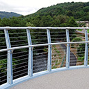 Newbridge Pedestrian Bridge