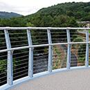 Newbridge Pedestrian Bridge