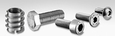 Stainless Steel Screws and Bolts
