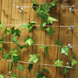 Tensioned Wire Trellis System - Stainless Steel