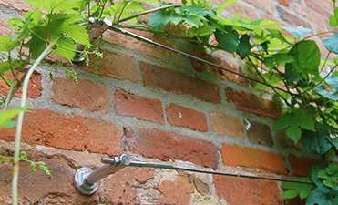 Wire Trellis Systems
