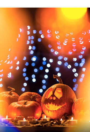 Halloween Lighting Catenary Wire